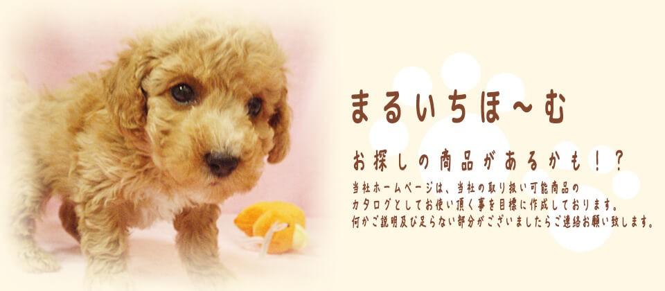 『有限会社マルイチ』は、犬・猫の専門店商品を中心に、ペット専門店様のカタログとしてお使い頂く事を目的とした、サイトです。